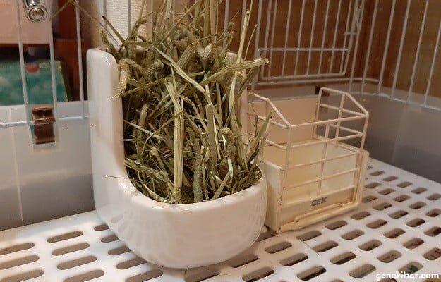 川井の牧草ポットとGEXの牧草BOXの大きさ比較