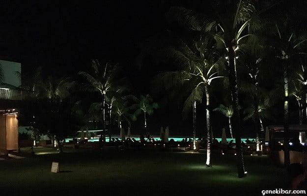 ポテトヘッドビーチクラブの芝生エリア