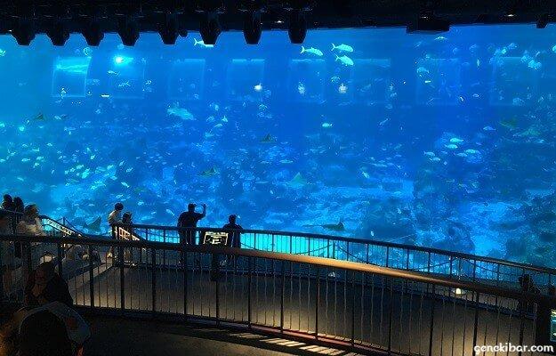 セントーサ島の水族館、シーアクアリウムのオーシャンギャラリー