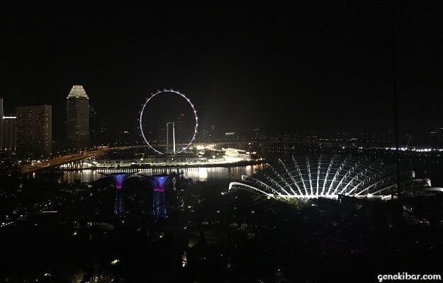 シンガポールフライヤーとフラワードーム