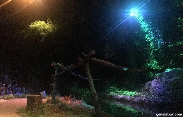 クリーチャーオブザナイトショー開演のライト