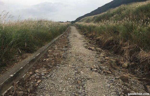塗装が悪く歩ける範囲が狭まるすすき草原の遊歩道