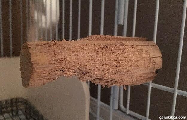 うさぎが齧り終わった後のかじり木コーン