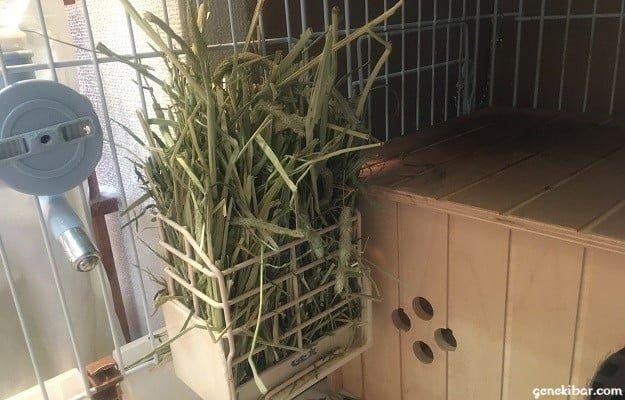 うさぎの留守番1泊2日分の牧草