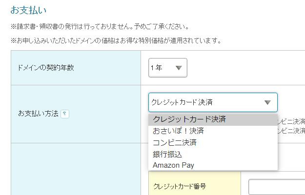 ムームードメインの支払い選択画面