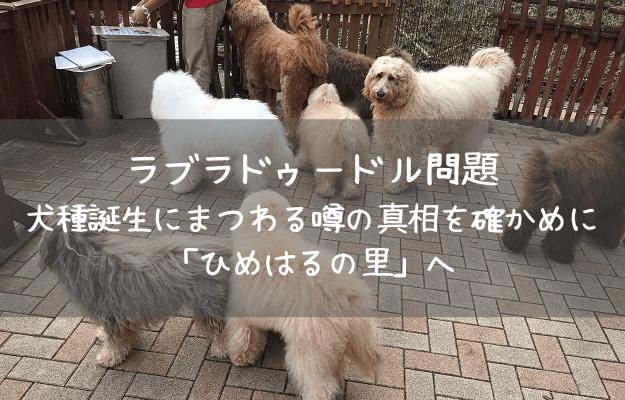日本語表記のみのサムネイル(アイキャッチ)画像